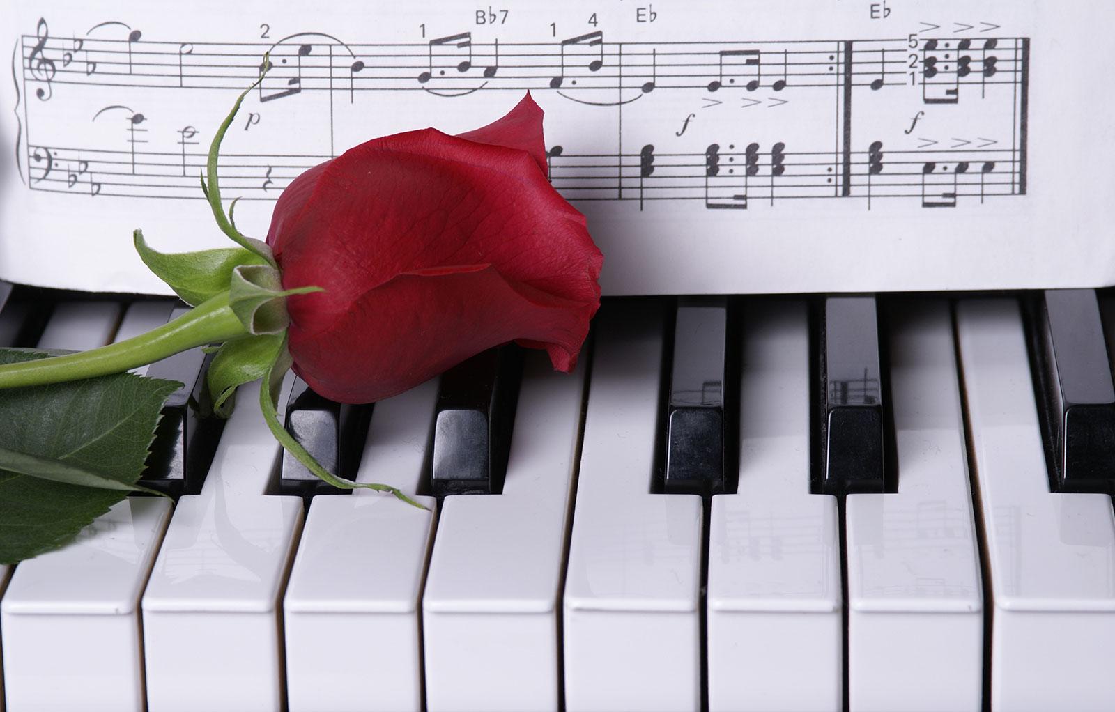 背景画像-ピアノとバラ-